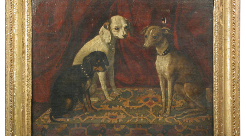 Portrait of three favourite dogs
