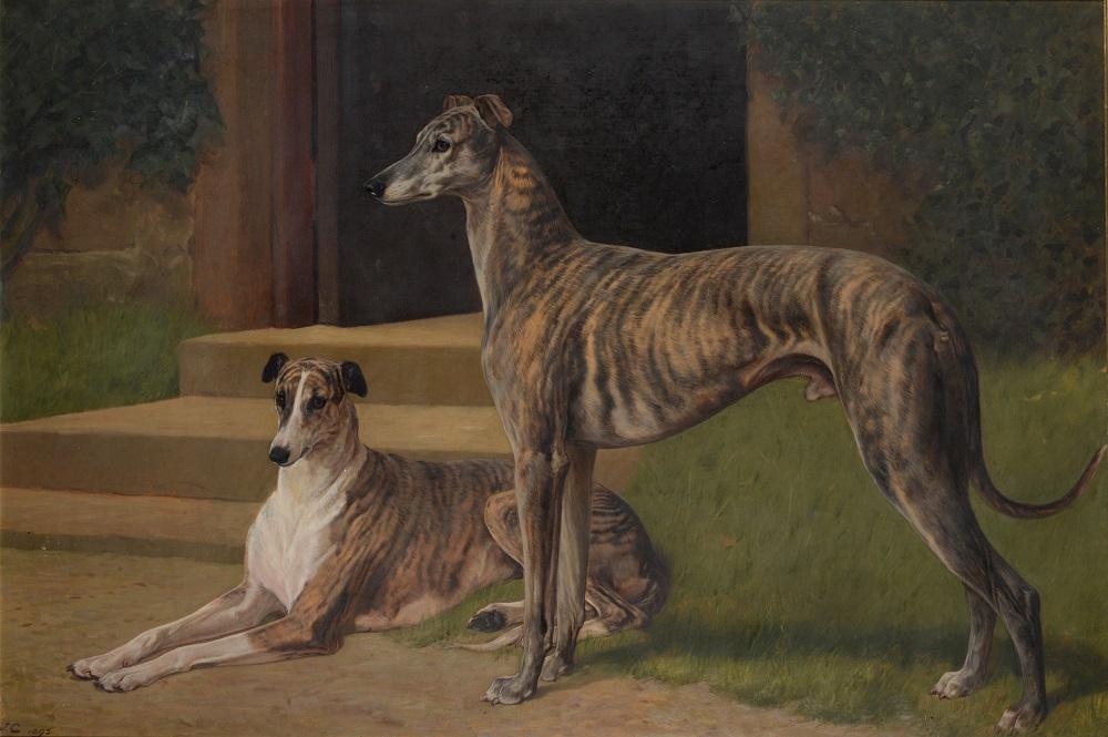 "JohnCharlton (1849-1917)""Greyhounds 'Fullerton' and 'Bit of Fashion' outside Shortflatt Tower"""
